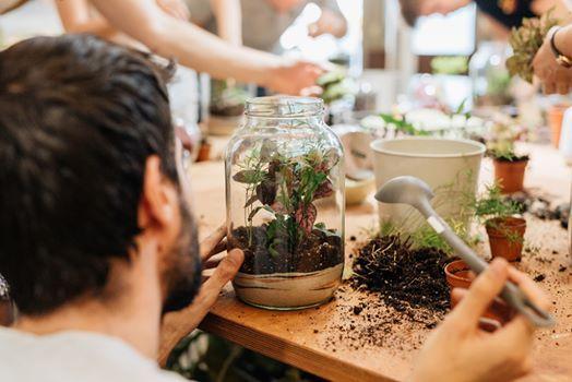 Terrarium workshop make your own terrarium