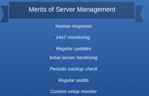 Server management services and server maintenance steps to access